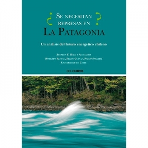 ¿Se necesitan represas en la Patagonia?