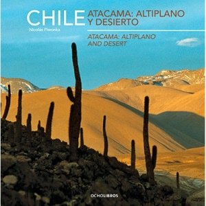 Chile Atacama Atliplano y Desierto