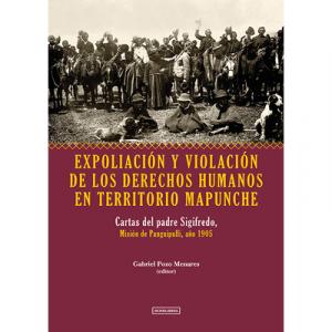 Expoliación y Violación de los derechos humanos en territorio Mapunche