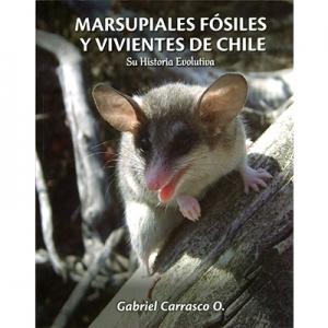 Marsupiales F�siles y Vivientes en Chile